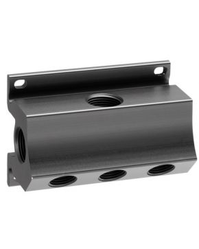 Wall mount manifold 5 outlets 1/2""